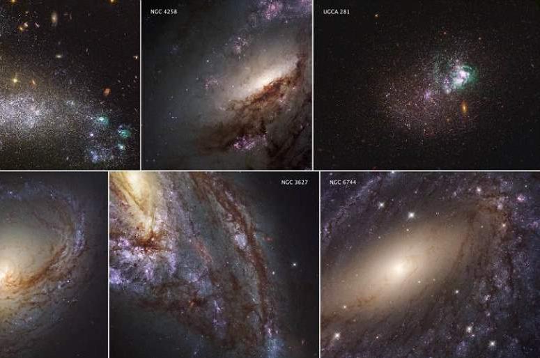 Астрономы показали самые подробные снимки близлежащих галактик