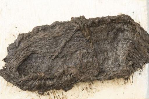 Швейцарские археологи нашли в озере доисторический лапоть